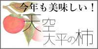 奈良・五條の富有柿/ファーム柿谷